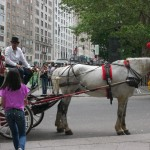 Laudau Carriage and Driver on 59th Street
