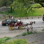 Ride Through Central Park