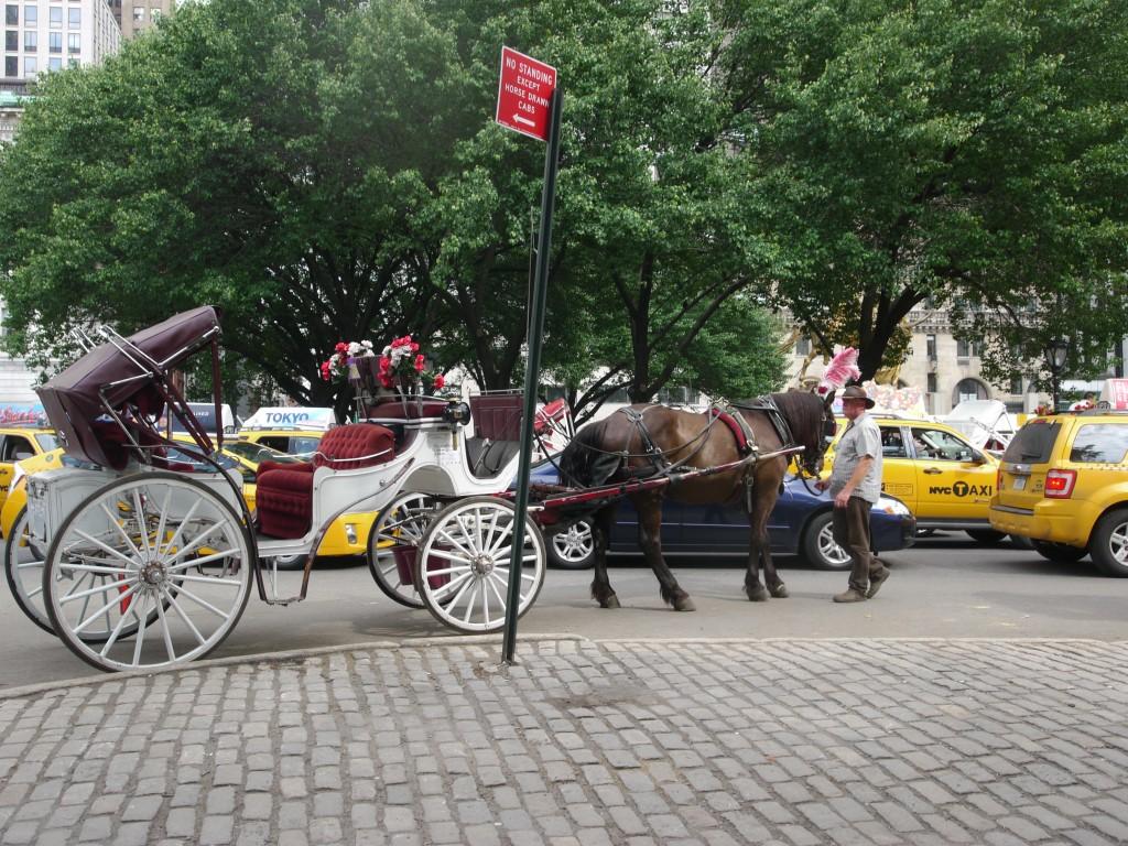 Laudau Carriage at Columbus Circle