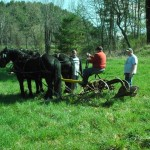 Driver Ken Marks, Loren and Lester Coit with Percherons