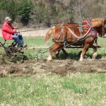 Belgium team plowing