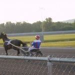 Trotter at Tioga Downs Race Track