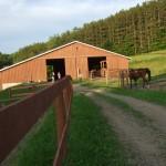 Meadowgate Barn