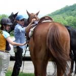 Karen and Emma adjusting Jupiter's saddle