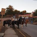 Horse rides in Bariloche