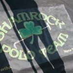 Shamrock Polo Team Banner