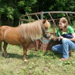 Karen and mini-horse at auction