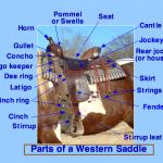 Western Saddle Parts authors BLW, Borsi112, Tinker Stute (Wikipedia)