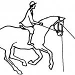 Author: Montanabw, Wikipedia