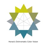 Horse Dichromatic Color Vision