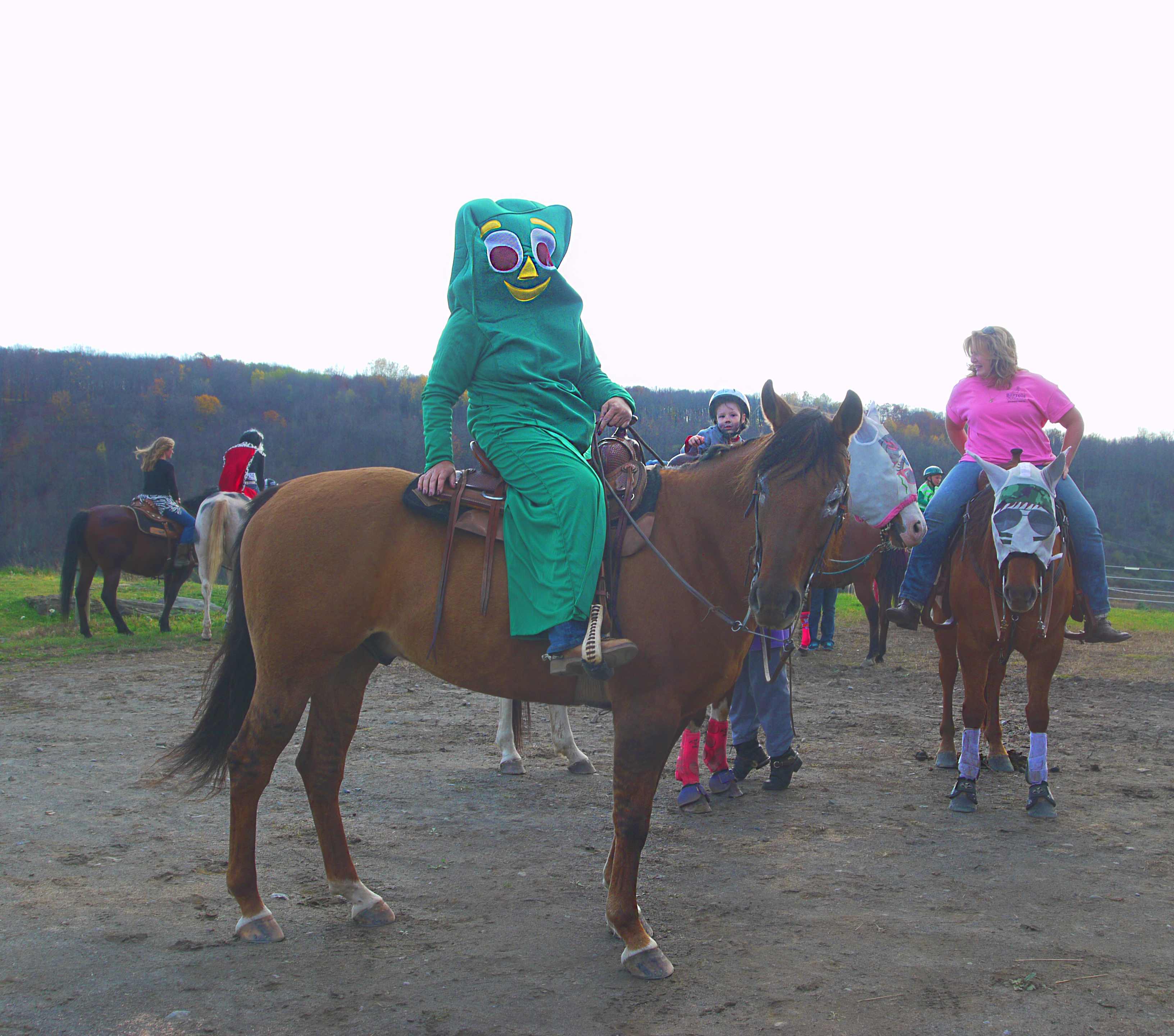 Rockin N Stables And Ranch Athens Pa 2 Talk Horses