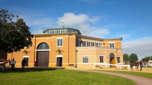Tattersalls Auction in Newmarket - UK